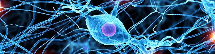 Los-complementos-vitaminicos-reducen-el-riesgo-de-tumores-cerebrales